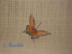 Mariposas de plumas naranjas