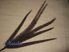 Ramas alambradas 25-30 cm