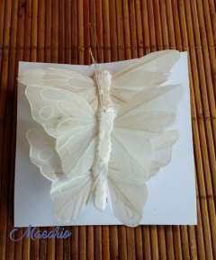 Mariposas de plumas blancas