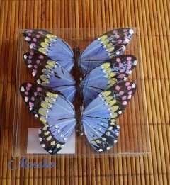 Mariposas de plumas azules