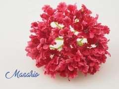 Small petal hydrangea 12 cm aprox.
