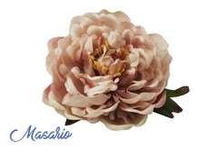Flor Becky