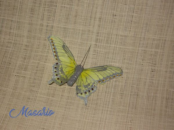 Mariposas de plumas amarillas