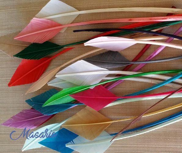 Pluma de flecha de pavo 20-30 cm