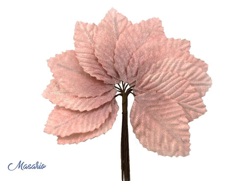 12 Velvet leaves (4 x 6 cm.)