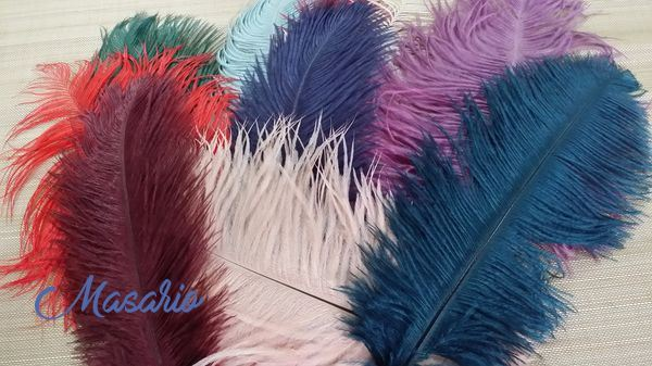 Ostrich feather 30 cm aprox.