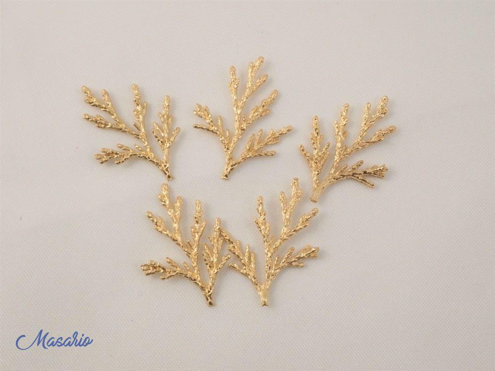 Caracolas y coral