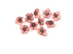 Mini flor 10 und.